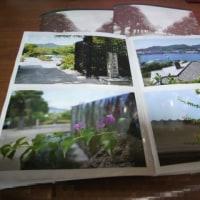 写真の現像。