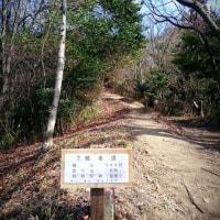 2017.2.8 猫山リベンジ