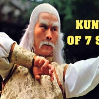 空耳カンフー映画 「seven steps of kung fu」