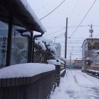 今冬2回目の積雪