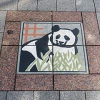 パンダの化粧タイル
