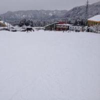 20年ぶりのスキー