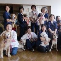 特別養護老人ホーム 2011 11 30
