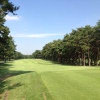 最近のゴルフ