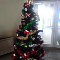 バッハホールも クリスマス飾り (*'▽')