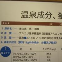 蒲郡温泉 ホテル竹島で日帰り入浴