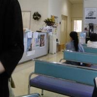 マリィさん、元気ないから動物病院