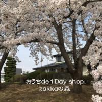 桜の記念樹