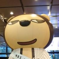 大阪を楽しんだ1週間