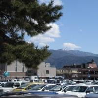 3月16日(木)今日の山と花