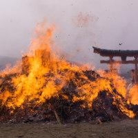 宮島・とんど焼き 170114