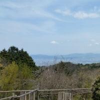 17/4/22 ポンポン山→摂津ジム