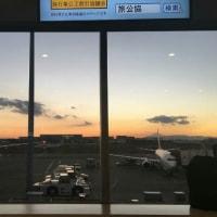 12/6 ルイのTwitter写真は〜