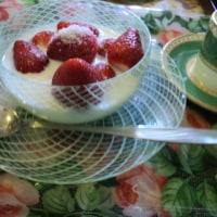 朝食はイチゴのみ