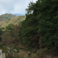 わたらせ渓谷鉄道、終点の間藤駅まで行ってみました。