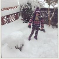 大雪とインフルエンザ