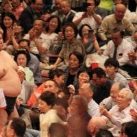 大相撲五月場所中日八日目観戦!
