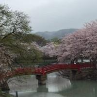 春風の誘いin徳島県南部