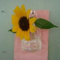 ペットボトル一輪挿し花器