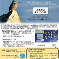 【募集中】愛鳥週間写真展の展示作品