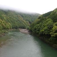 昨日の市鹿野橋の鮎画像!