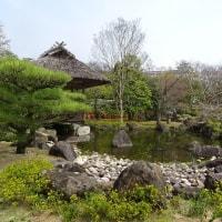 18切符利用チョットそこまで   姫 路 城 散 策