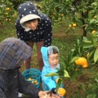 雨でしたが、お天気になりそうですね(^^)10月23日