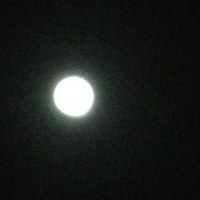 5月6日は坂東霊場を満願した日