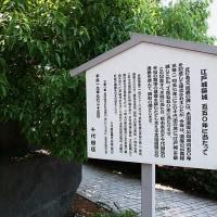 日本橋散歩・江戸城の内堀を歩く