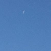 月が。 (^o^)