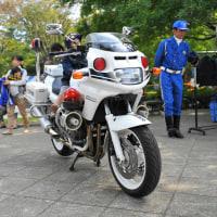 GSF1200P