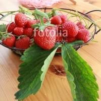 fotolia「採れたてのイチゴ」 今年は豊作でした☆