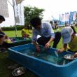 第22回 泳げる霞ヶ浦市民フェスティバルが開催されました。
