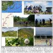 OSAC 2017年6月月例山行、大日岳報告の巻