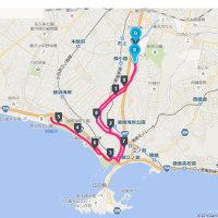 湘南国際マラソン10k練習
