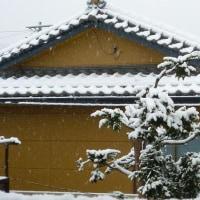 寒いけど~ 雪!?
