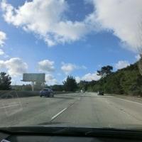 やっと晴れ間が現れました。カリフォルニアの青空は本当に気持ちがよいですね