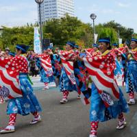 泉州よさこい(えじゃないか祭り)