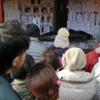 京都ゑびす(恵比寿)神社と十日戎(初ゑびす)