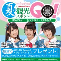 【チーム8】栃木レンタカーキャンペーン