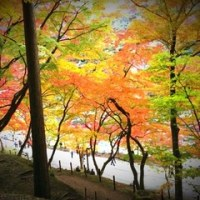 香嵐渓に行って来ました!