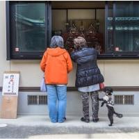 高取町「町家のひな祭り」街並み・明日までしてますよ