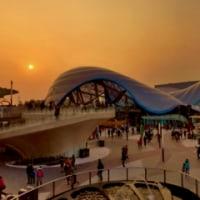 上海ディズニーランドが失敗してほしい、日本人とメディアの嘘