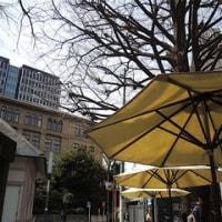 オープンカフェで昼食を!!