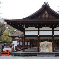 梅花情報 下鴨神社(賀茂御祖神社)の光琳の梅