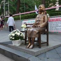 【韓国人のご都合ww】 韓国政府が「慰安婦報告書」を発刊 日本の慰安婦像移転要求を「合意の曲解だ」と批判