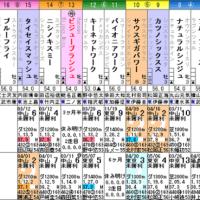 【ビジューブランシュ】5/20東京2R 3歳未勝利(混)・枠順&予想
