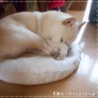 Peace~♪^^