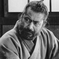 170402 黒澤明監督「赤ひげ」(1965)感想特5