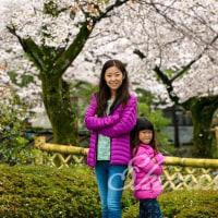 桜が満開な嵐山公園♪